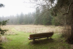 Rural Resting Spot. A handmade bench faces a lovely forested country vista in the Puget Sound area of western Washington State Royalty Free Stock Image