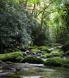 Rural River With Mossy Rocks Royalty Free Stock Image