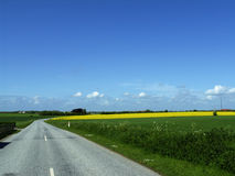 Rural road. Highway in to the horizon of nowhere royalty free stock photos