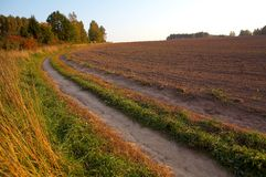 Rural road. Along the ploughed field and a wood Royalty Free Stock Images