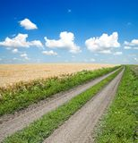 Rural road Royalty Free Stock Photos