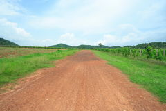 Rural road. Gravel road on the urban lacation Royalty Free Stock Photography