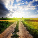 Rural road. In the field and sunny sky Stock Photos