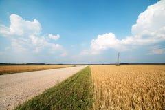 Rural road. Stock Image