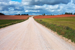 Rural road. Rural road in early autumn Royalty Free Stock Photo