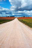 Rural road. Rural road in early autumn Royalty Free Stock Image
