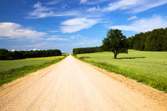 The rural road. Not asphalted road passing through agricultural fields Royalty Free Stock Photo