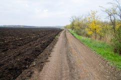 Rural road. Dirty rural road at autumn Royalty Free Stock Image