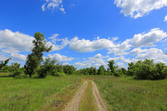 Rural road across meadow in steppe Stock Images