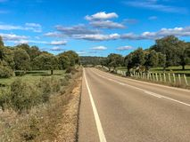 Rural road across the pasture with holm oaks and fence and blue sky and clouds in Spain. Rural road across the pasture with holm oaks and fence and blue sky and Royalty Free Stock Photo