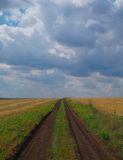 Rural road in  agricultural field . Royalty Free Stock Photography