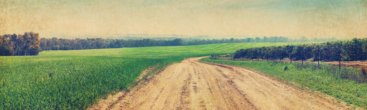 Rural road. Agriculture landscape Royalty Free Stock Images
