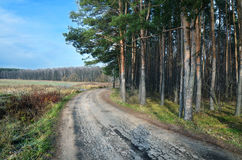 Rural road in the autumn Stock Photos