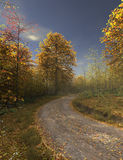 Rural road in autumn Stock Photography