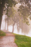 Rural road through the autumn park on a misty morning. Royalty Free Stock Images