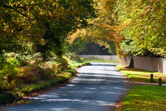 Rural road in autumn running alonside woodland Stock Photos