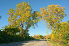 Rural Road in Autumn Stock Photo