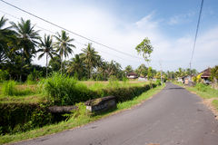 Rural road in Bali Stock Photography