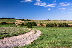 Rural road on Beautiful spring rural landscape Stock Images