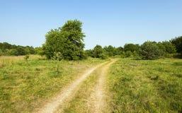 Rural   road in belsrus. Rural Dirt road  Belarus  spring season.  forest Stock Images