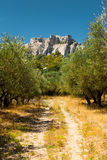 Rural Road Chateau Des Baux Ruins Royalty Free Stock Photo