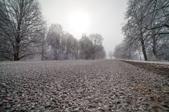 Road in frosty morning. Stock Images