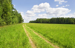 A rural road in the countryside. With blue sky Royalty Free Stock Photos
