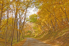 Rural Road on a Fall Day Stock Photo