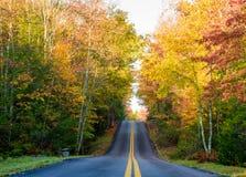 Rural road through Fall Foliage royalty free stock photos