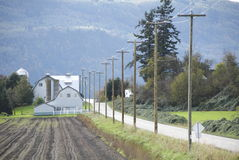 Rural Road and Farm Land Royalty Free Stock Images