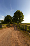 Rural road ,  fence. Dirt road in the rural area of the farm. enclosed by a wooden fence Royalty Free Stock Photography