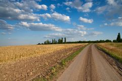 Rural road and field Royalty Free Stock Photography