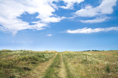 Rural road through a field. With cloudy sky on the background Royalty Free Stock Photo