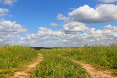Rural road in field. Beautiful landscape with rural road in summer field Royalty Free Stock Images