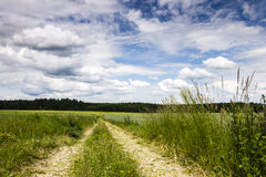 Rural Road with Field and Blue Sky Stock Image