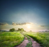 Rural road in field with green grass Royalty Free Stock Photo