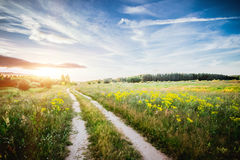 Rural road in field Stock Photography