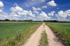 Rural road through fields  and blue sky with clouds. Rural road through fields with green herbs and blue sky with clouds. Summer farmland landscape Royalty Free Stock Photo