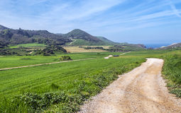 Rural road in the fields of Cantabria Stock Photography