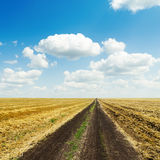 Rural road in fields after harvesting and white clouds in blue sky Stock Image