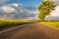Rural road between fields in warm sunshine under dramatic sky Stock Photography