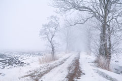 Rural road in fog and snow Royalty Free Stock Photo