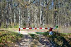 Rural road in the forest with closed barrier Stock Images