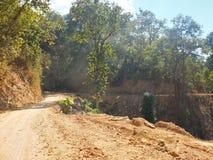 A rural road through a forest Stock Photos