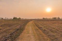Rural road going through prairie under sunset sky Stock Photo