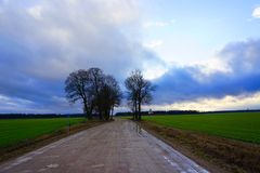 Rural road, green field, white clouds in blue sky Royalty Free Stock Photos