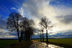 Rural road, green field, white clouds in blue sky Royalty Free Stock Photography