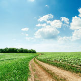 Rural road in green fields and clouds over it Stock Image