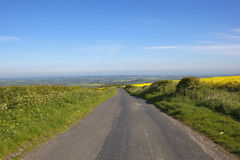 Rural road with hedgerows Royalty Free Stock Image