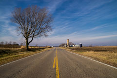 The rural road. The road through the Illinois farmland on a beautiful winter morning Royalty Free Stock Images